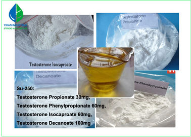 China Semi - Finished Injectable Anabolic Steroids Sustanon 250 For Pharmaceutical Material supplier