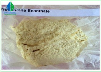 China CAS 10161 33 8 Bodybuilding Legal Steroids  , Trenbolone Enanthate Powder supplier