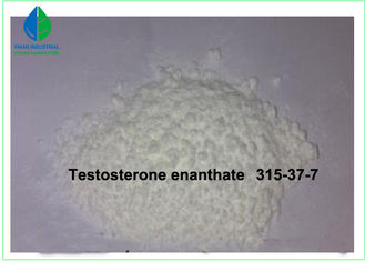 China Testosterone Enanthate Raw Steroid Powders Applied Male Hypofunction supplier