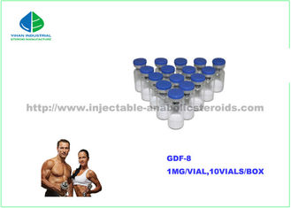 China Injectable Growth Hormone GDF-8 Peptides 1mg/vial gdf 8 Myostatin White Peptides supplier