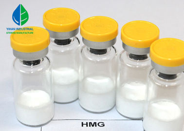 China Factory Supplier Natural HGH Body Supplements HMG Injection For Fertility 75iu/ Vial supplier