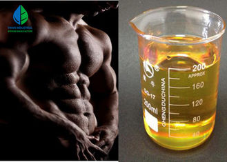 China Injectable Steroids Liquid Nandrolone Phenylpropionate NPP 100/200mg/Ml For Muscle Gain supplier