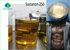 China Yellow Liquid Injectable Hormones Anabolic Steroids Testosterone Sustanon 250mg/ml  sus 250 For bodybuilding factory