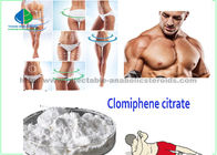 Clomiphene Citrate Raw Steroid Powders Raw Testostrone Clomifene Citrate Steroid Powder