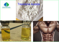 China Anabolic Muscle Building Steroids White Powder Trestolone Acetate ( MENT )for Strength factory