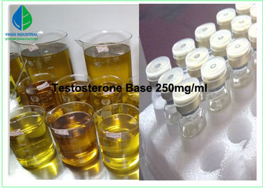 China Testosterone Base Injectable Anabolic Steroids / Bodybuilding Anabolic Steroids factory