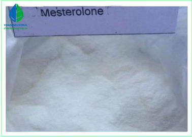China Oral Anabolic Steroid Male Enhancement Powder CAS 1424-00-6 Mesterolone / Proviron factory