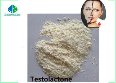 China Fat Burning Steroids / Male Hormone Testosterone White Crystalline Powder factory