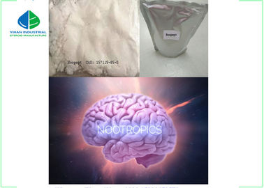 China Noopept Nootropic Powder / Nootropics Smart Drugs Memory Enhancer Raw Materials factory