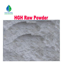 Human Growth Hormone Anabolic Androgenic Steroids HGH Raw Powder 99% Min Purity