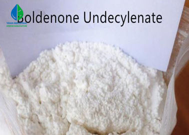 White Oral Anabolic Steroid Pharmaceutical Boldenone Undecylenate 2 Years Shelf Life